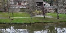 Les bords de Lède - Casseneuil