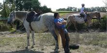 Ferme Equestre Hantayo - Saint-Robert