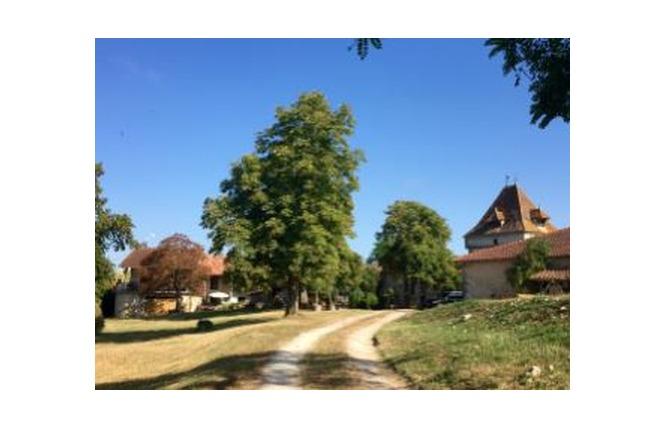 Au Septième Sens 1 - Villeneuve-sur-Lot